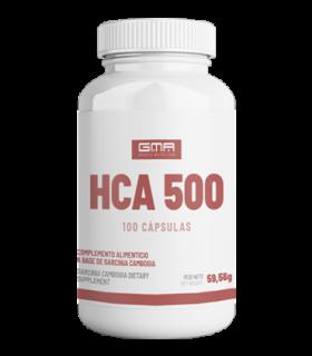 HCA 500
